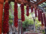New Mexico Large Pod Sandia Chile Ristra- 3 Foot